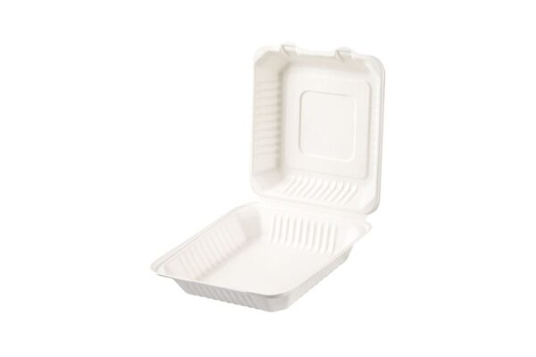 Sugarcane Food Container 23x23 cm, Hinged-Lid, Square | TESSERA Bio Products®